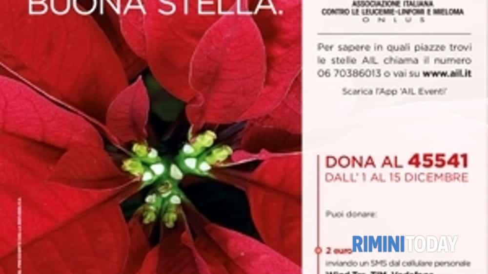 stelle di natale ail in 4800 piazze italiane 8910 dicembre-2