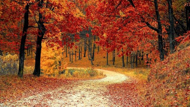 Domani è in arrivo l'equinozio d'autunno: ecco perché non cade sempre nello stesso giorno