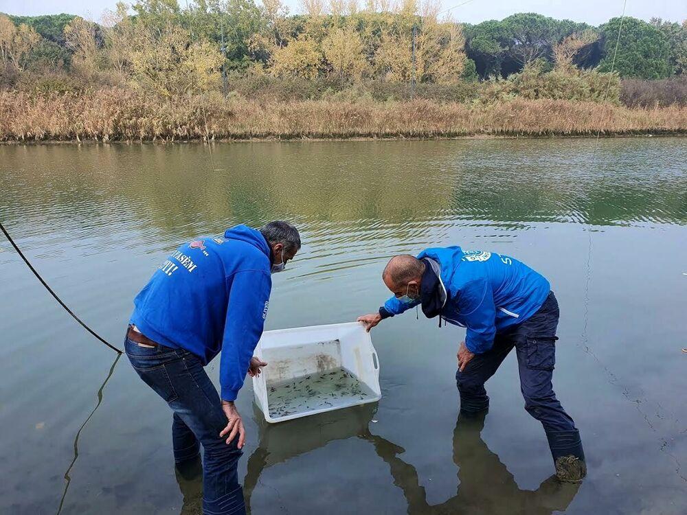 Ambiente, anche l'Acquario di Cattolica in prima fila per salvare la biodiversità