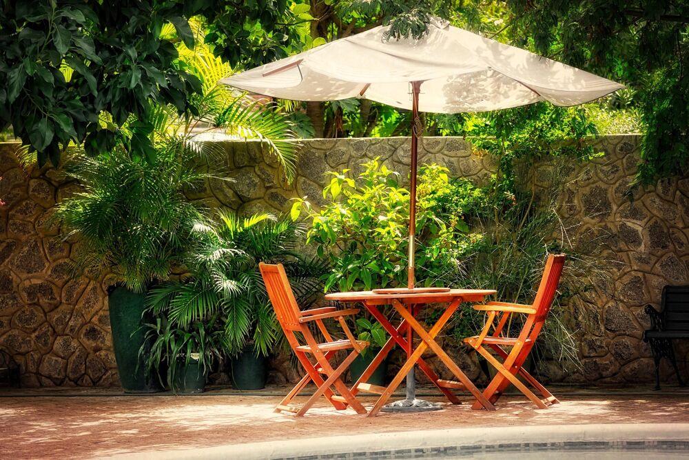 Bonus Verde 2021: nuovo look al giardino spendendo poco