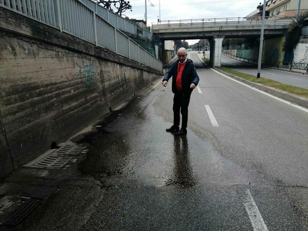 """Pecci (Lega): """"Via Firenze è una fogna a cielo aperto, il nuovo Psbo non funziona"""""""